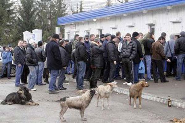 trouwe honden van supporters